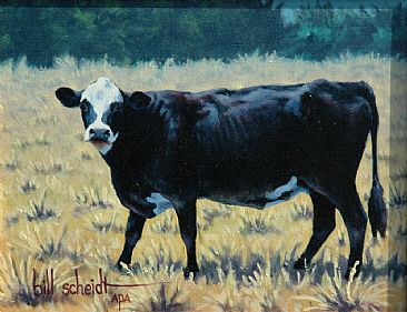 Black Baldy - Cow by Bill Scheidt