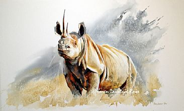 Big Five Rhino - Black Rhino by Karen Laurence-Rowe