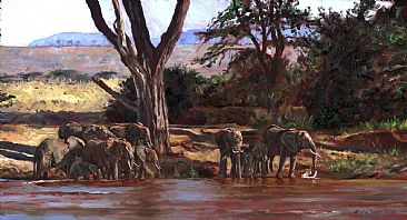 By the River - elephants by Linda Besse