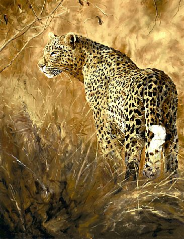 Leopard's Light (SOLD) - Leopard by Linda Besse