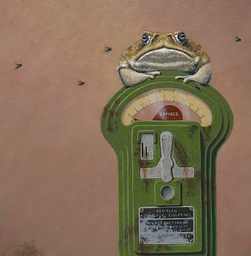 Expired - detail - cane toad, frog, toad, parking meter, fly by Linda Herzog