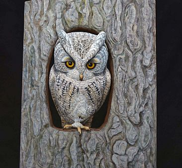 50 Shades of Grey - Gray-phased Screech Owl by Uta Strelive