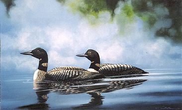 Morning Mist - Common Loon by Michelle Mara