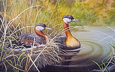 Red-necked Grebes -  by Michelle Mara
