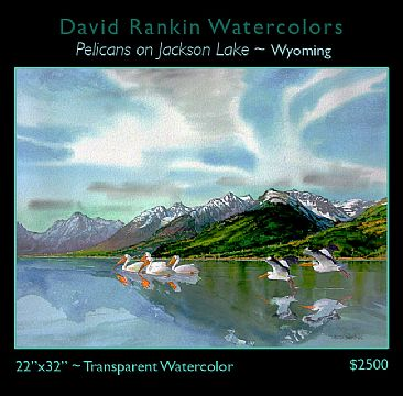 Pelicans on Jackson Lake ~ Wyoming ( Unframed ) - White Pelicans on Jackson Lake, Wyoming, near Jackson Hole by David Rankin