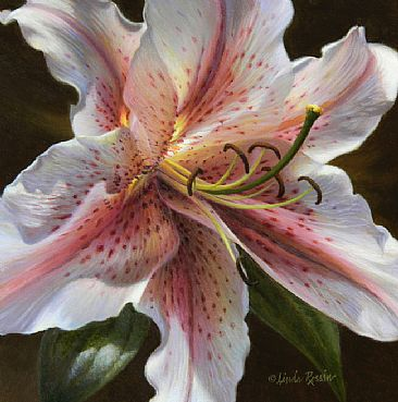 Radiance (Sold) - Lily by Linda Rossin