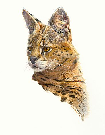 Spirited - Serval by Linda Rossin