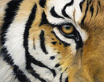 http://www.natureartists.com/art/resized/321_Eye_Of_The_Tiger.jpg
