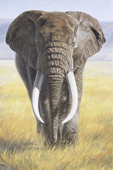 African Elephant Paintings