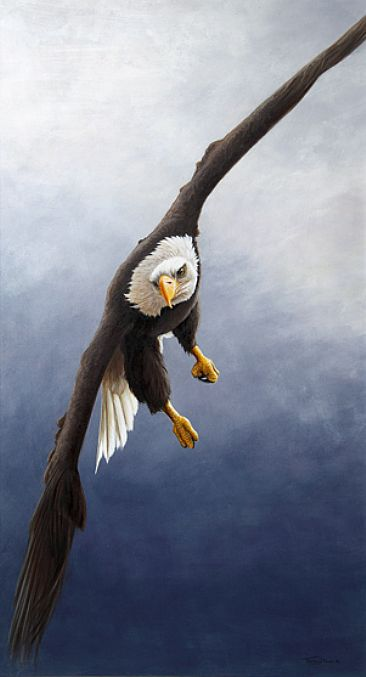 Coming in - Bald Eagle by Jeremy Paul