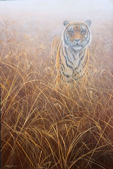 http://www.natureartists.com/art/resized/39_758a-tiger-at-dawn.jpg
