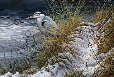 Winter Heron -  by Jeremy Paul