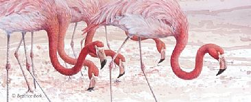 Through the Shoals - American/Caribbean Flamingos by Beatrice Bork