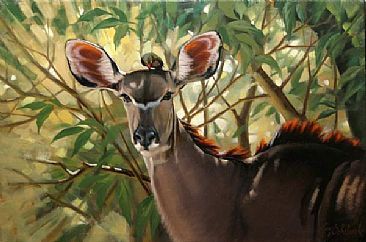 Kudu - Kudu , Red-billed Oxpecker by Guy Coheleach