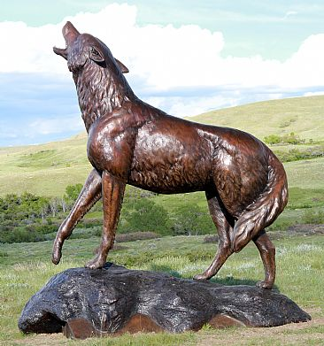 ''WILD SONG''  - Monumental bronze Coyote Howling  by Chris Navarro