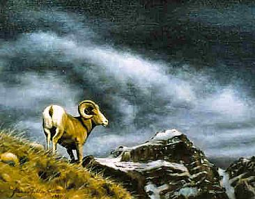King of the Hill - Bighorn Sheep by Jeanne Filler Scott