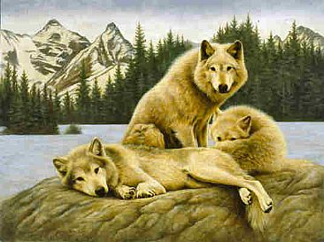 Mack and the Boys  - Timber Wolves by Jeanne Filler Scott