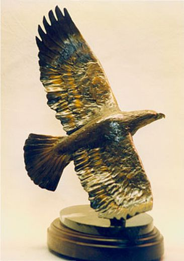 """Glimpse of Gold"" - Golden Eagle by Renee Bemis"