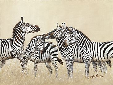 The Altercation - Zebras by Janet Heaton