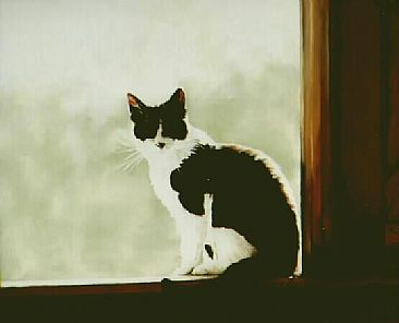 Sitting in the Window of the Barn - Domestic Cat by Janet Heaton