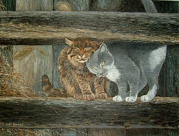 Barn cats - Barn cats by William Berge