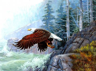 Shore Patrol - Bald Eagle by Robert Kray