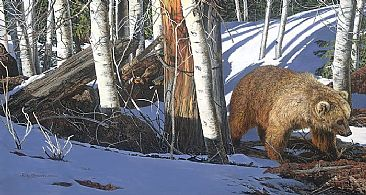 BREAKING THE SILENCE - Bear, Hidden Animals by Judy Larson
