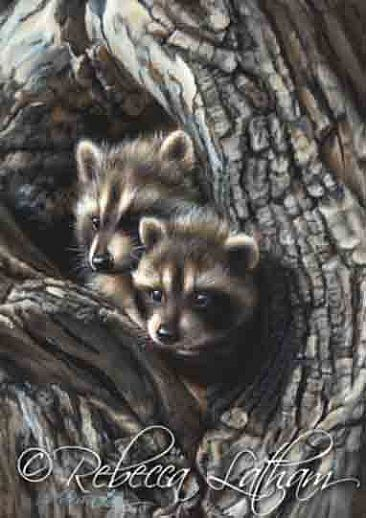 Young Raccoons - Painting Art by Rebecca Latham Raccoon Painting