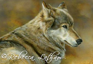 Defensive - Wolf by Rebecca Latham