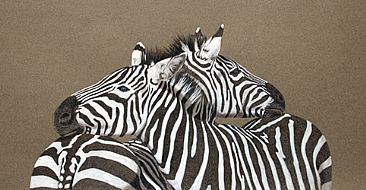 Opposing Views - Zebras by Esther Lidstrom