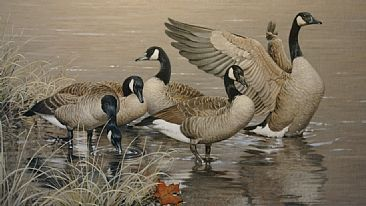5 Goose - Goose by Patricia Pepin