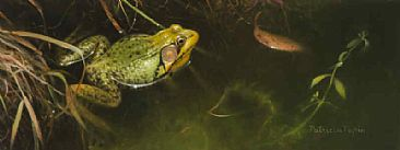 Pond Warden - Green frog by Patricia Pepin
