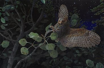SALLY-GLEANING--FLAMMULATED OWL - Flammulated Owl by Carel Brest van Kempen