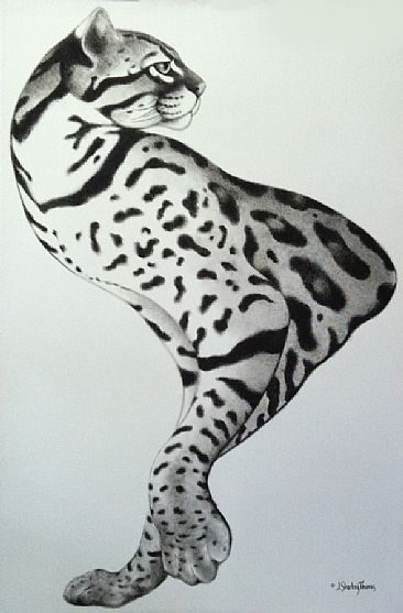 Ocelisk - Ocelot by J. Sharkey Thomas