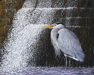 Keeper of the Falls - great Blue Heron by Len Rusin