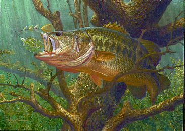 Largemouth bass painting art by mark susinno for Bass fish painting