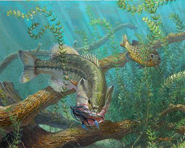 1000 images about art work on pinterest for Bass fishing art