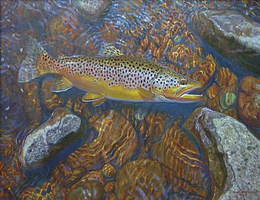 SOON TO BE RELEASED - Brown trout by Mark Susinno