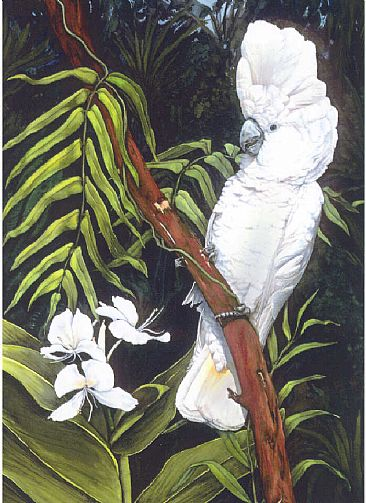 White Cockatoo & Wild Ginger - White or Umbrella Cockatoo by Linda Parkinson