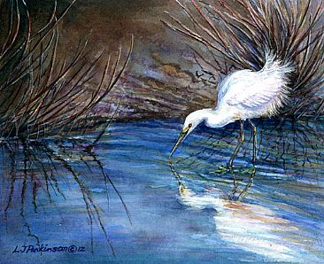 Reflections - Snowy Egret by Linda Parkinson