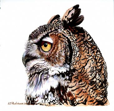 Great Horned Owl Portrait (SOLD) -  by Linda Parkinson