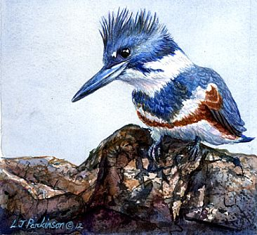 Big Bird Attitude - Belted Kingfisher (female) SOLD by Linda Parkinson