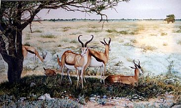 Island of Shade - Springboks by Linda Parkinson