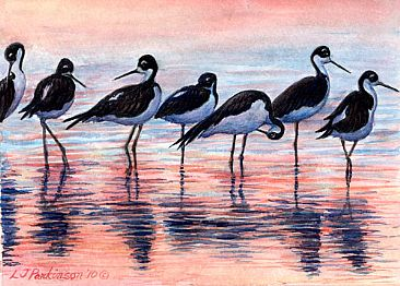 Stilts at Sunset (SOLD) - Black Necked Stilts by Linda Parkinson