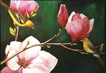 Spring Beauties - Western Tanagers & Magnolias by Linda Parkinson