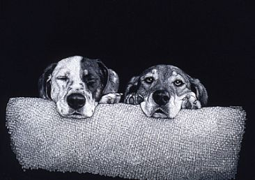 Buster & Annie - Mixed breeds by Diane Versteeg