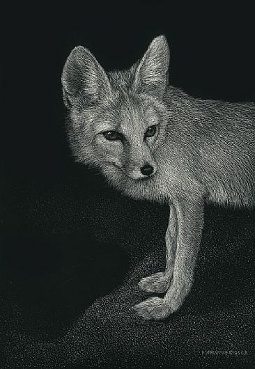 Kipper - Kit Fox by Diane Versteeg