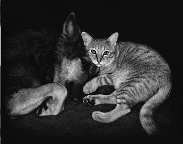 Samson & Phoenix - Domestic dog and cat by Diane Versteeg