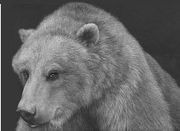 Rosy II - Grizzly Bear by Diane Versteeg