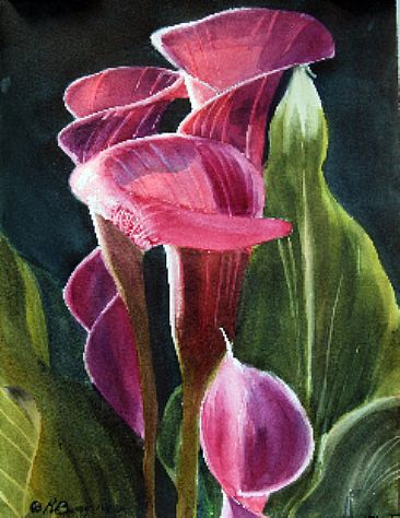 Calla Lilies - Painting Art by Robin Berry